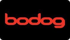 Download Bodog Casino Today!